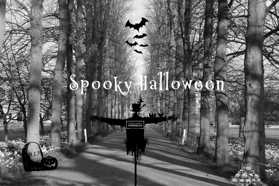 halloween, spooky, spooky season, trick or treat, cambridge, news, happy halloween, spooky halloween, traditions, halloween costumes